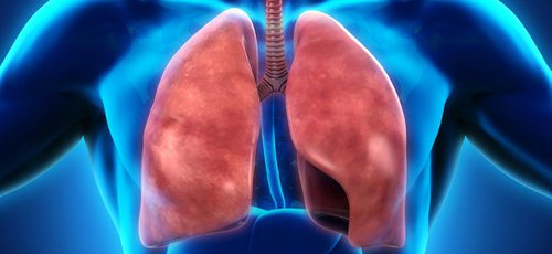Doctors and medical centres specialising in Skin & lungs