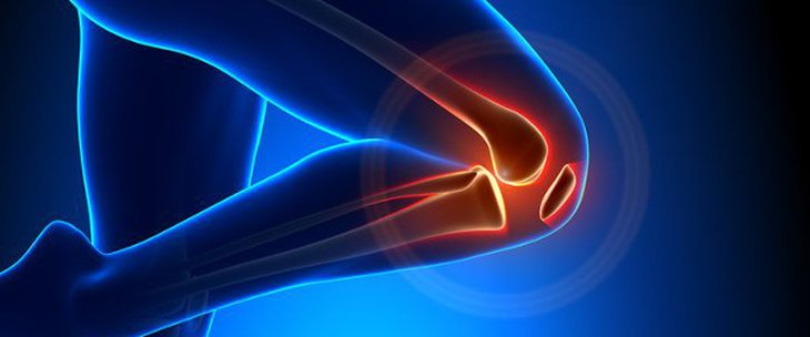 Doctors and medical centres specialising in Meniscus surgery