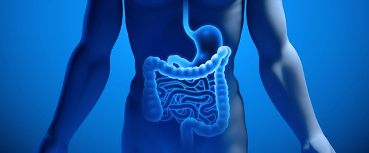 Doctors and medical centres specialising in Gastrointestinal diseases