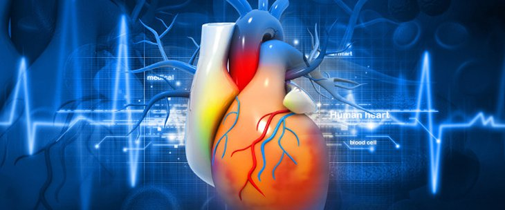 Doctors and medical centres specialising in Cardiac defect surgery