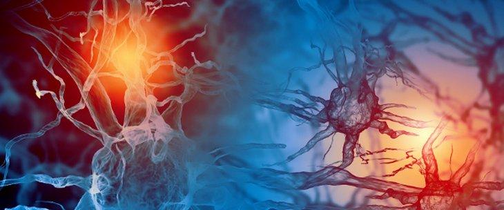Méningiomes – Trouver des médecins spécialisés et des spécialistes