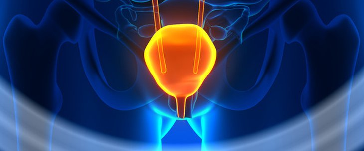 Doctors and medical centres specialising in Bladder pain